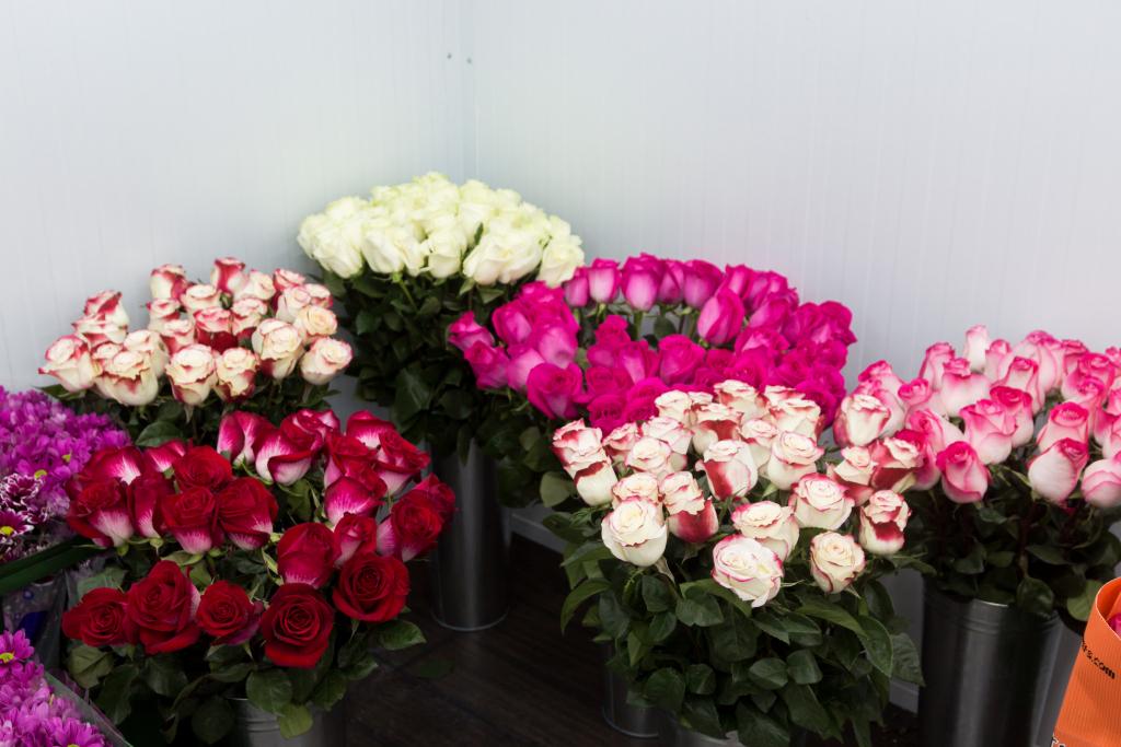 Купить букет цветов в нижнем новгороде в районе 1000 рублей — img 14
