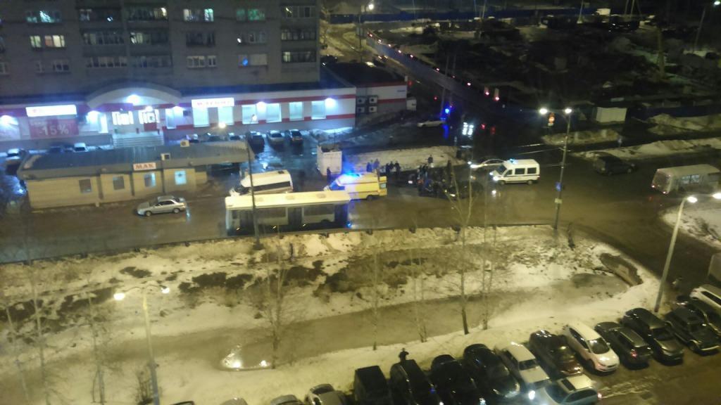 ВНижнем Новгороде шофёр наиномарке сбил школьницу на«зебре»