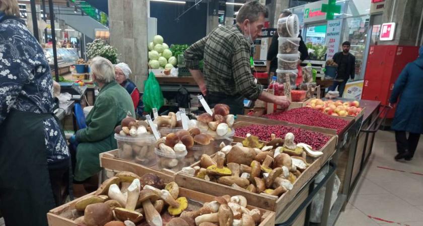 Новый бизнес москвичей в Нижнем Новгороде: они скупают грибы