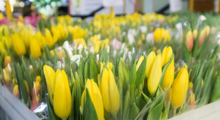 Цветы дёшево нижний новгород — img 14
