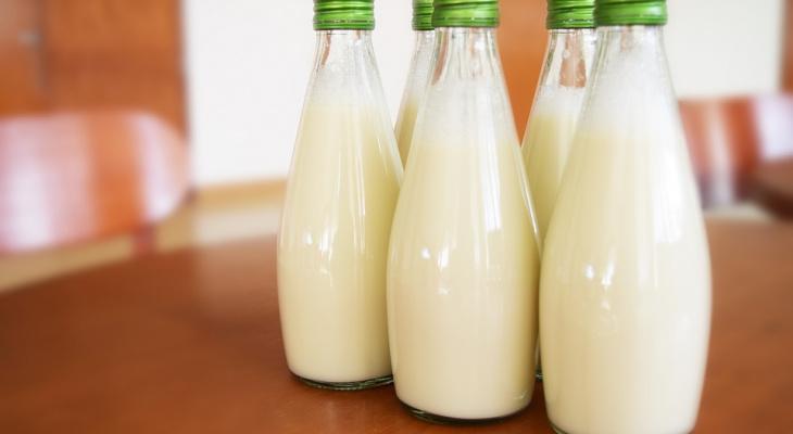 ЕЦМЗ закупит для нижегородских школ и детсадов молочную продукцию на 500 миллионов