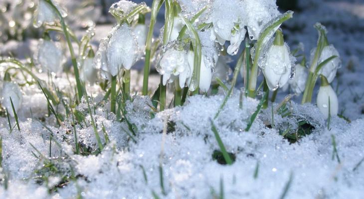 Потепление и осадки ждут нижегородцев в конце недели