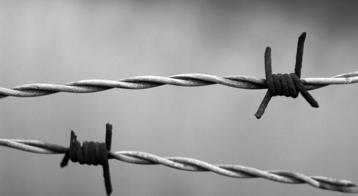 Два брата и их подельник обвиняются в похищении человека в Нижнем Новгороде