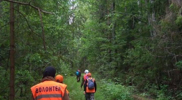 Пропавшую Александру Гусеву ищут в Нижегородской области