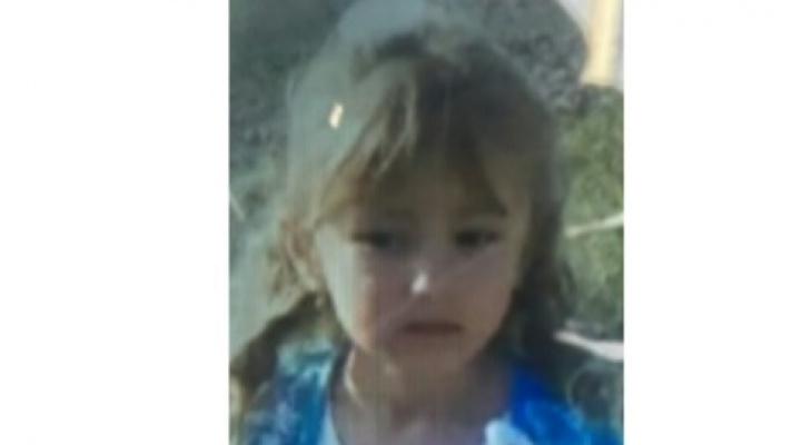 Пошли вторые сутки: На поиски пятилетней Зарины Авгоновой вышло более 500 человек