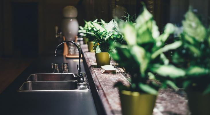Какие продукты не надо мыть перед готовкой
