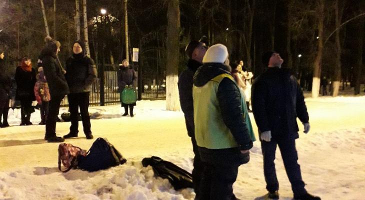 Едва не заклевали вороны: альпинисты спасли кошку, которая три дня просидела на дереве в Автозаводском парке