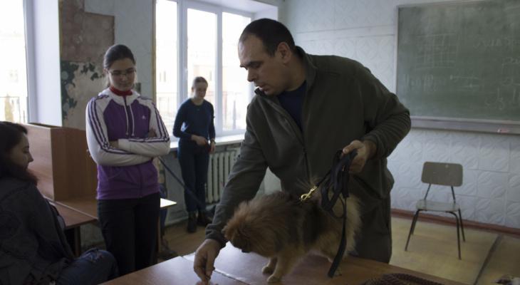 Нижегородский кинолог с 30-летним опытом бесплатно займется воспитанием собак