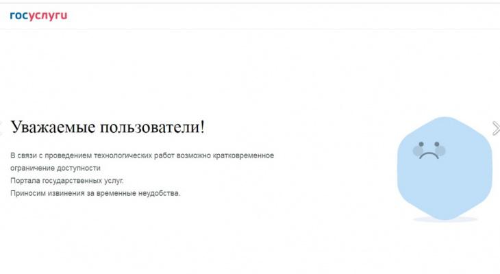«Какая неожиданность»: нижегородцы не могут подать заявки на «Госуслугах»