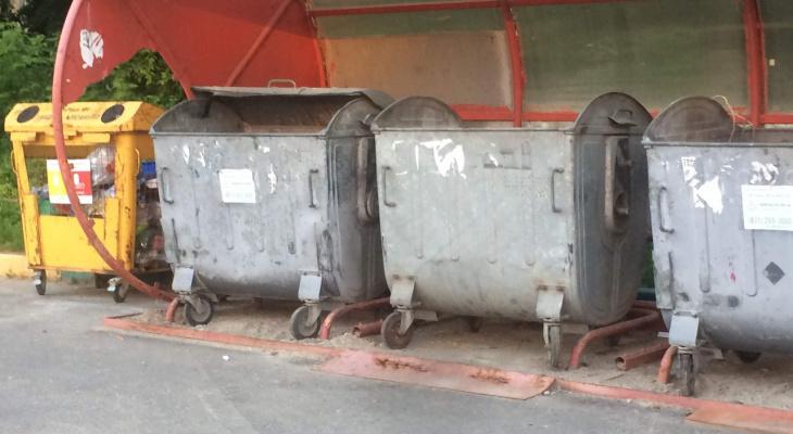 Коммунальный мусор будут сжигать плазмотронами в Нижнем Новгороде