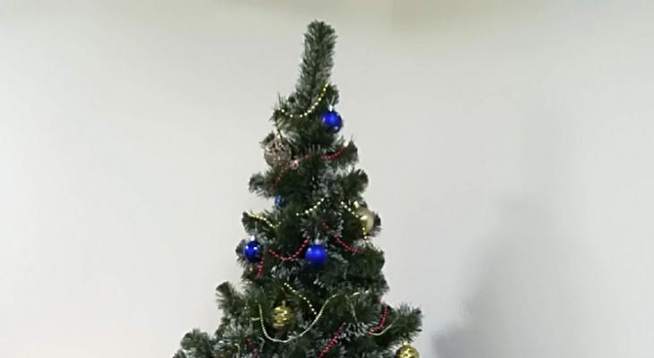 В каком формате пройдут новогодние представления для детей в Нижегородской области
