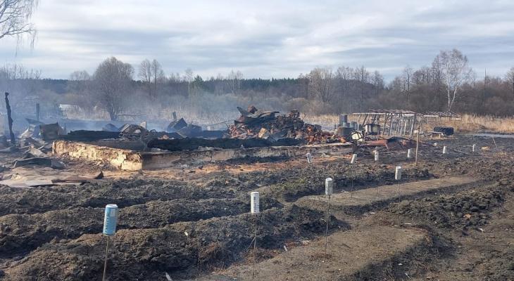 Из-за пала травы загорелись 8 жилых домов в Богородском районе