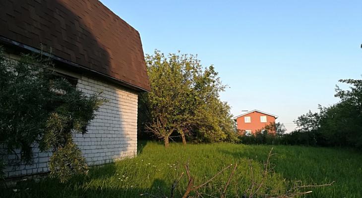 В Госдуме прокомментировали штрафы за одуванчики и ромашки на садовых участках