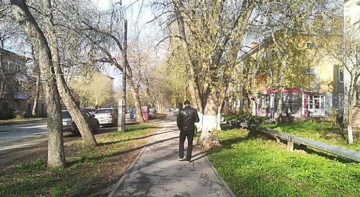 Аномальная жара до +27 градусов ожидается в Нижегородской области с 13 мая