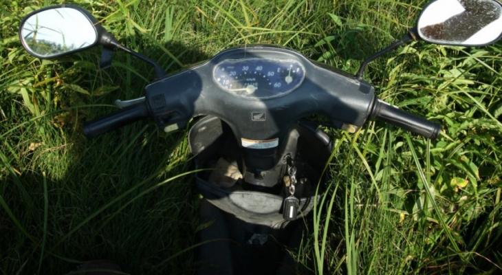 Пьяный мотоциклист не заметил собаку на дороге в Нижегородской области