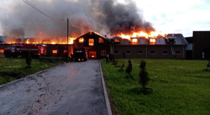 Конюшня сгорела на площади 600 кв.м. в Нижегородской области вечером 8 июня