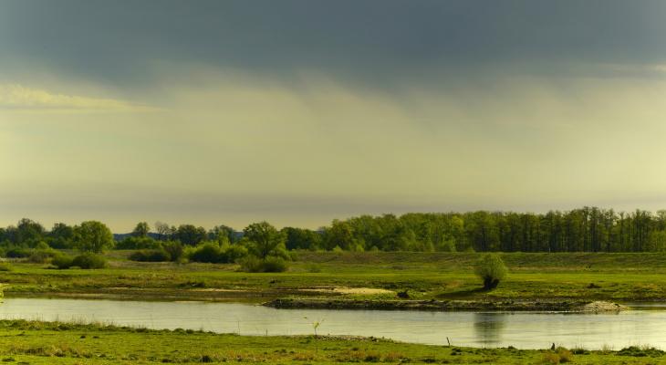 Град и гроза ожидаются в Нижегородской области 25 июня