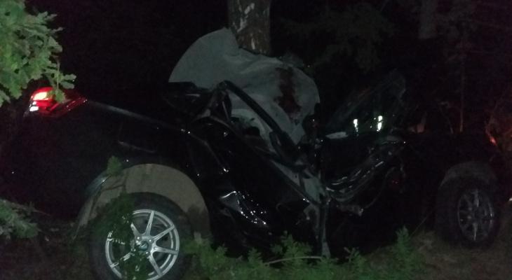Автомобиль с подростками врезался в дерево в под Балахной: четверо пострадали и один погиб