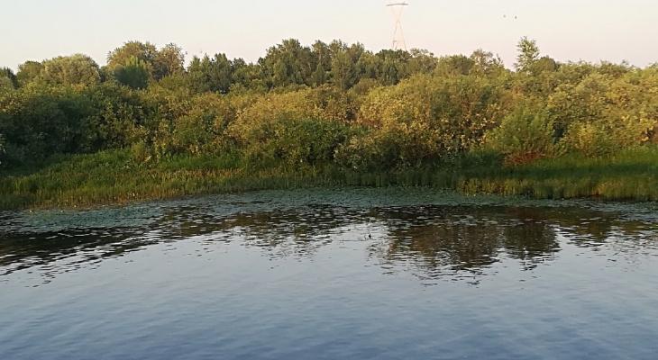 Тело мужчины обнаружили в воде под Мызинским мостом
